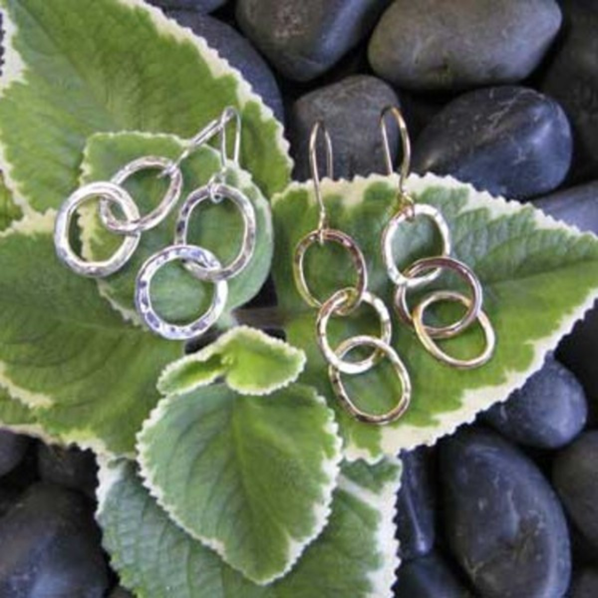 Circle Oval Earrings
